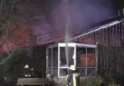 Germania - Zeci de maimuţe au murit în urma unui incendiu la grădina zoologică din Krefeld