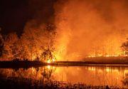 Incendii devastatoare în Australia: Premierul Morrison este criticat dur de pompieri