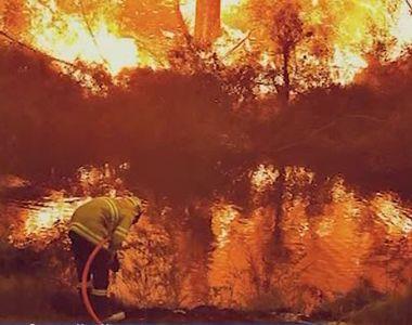 Un profesor român din Sydney lansează o teorie explozivă legată de incendiul din...