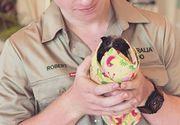 Familia celebrului australian Steve Irwin a salvat 90.000 de animale afectate de incendii