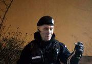 Alertă în Constanța! Locatari speriați de un șarpe aflat în scara blocului