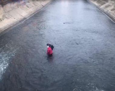 O femeie a fost salvată de jandarmi din mijlocul râului Dâmbovița după ce a încercat să...