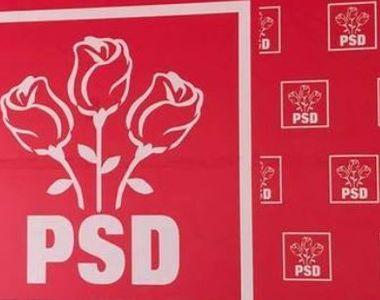 Reacția PSD după decizia CCR în cazul lui Teodor Meleșcanu