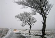 Alertă meteo: Cod galben de vânt puternic