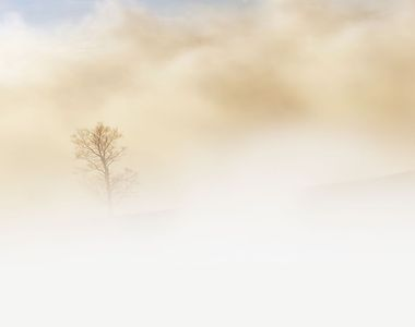 Cod galben de ceaţă, în judeţele Satu Mare, Mureş, Cluj şi Bistriţa-Năsăud