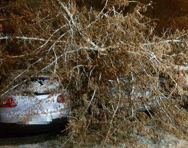 VIDEO | Vreme București. Iarna s-a dezlănțuit în Capitală. Mașini avariate și...