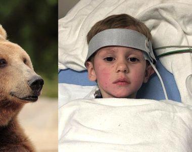 """Povestea incredibilă a unui copil care s-a pierdut în pădure: """"Un urs a avut grijă de..."""