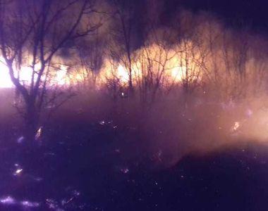 Buzău: Puternic incendiu de vegetaţie într-o zonă cu conducte de gaz. Focul s-a întins...