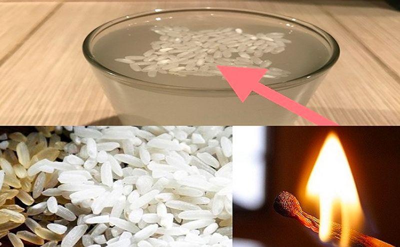 Orez din plastic din China