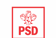 Fostul preşedinte al ANPC Horia Constantinescu, care a anunţat că va candida la Primăria Constanţa, a demisionat din PSD