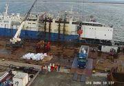Constanţa: A început descărcarea navei cu oi care s-a scufundat în Portul Midia