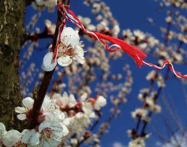 Felicitări 1 Martie. Cele mai ingenioase urări pentru cei dragi, la început de primăvară