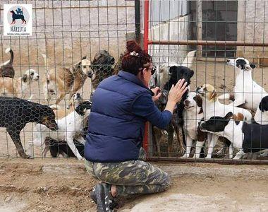 Legătura incredibilă dintre Alexandru Cumpănașu și asociația care are grijă de câinii...