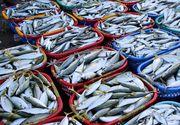 Borș de pește. Rețeta moldovenească de borș pescăresc care te va cuceri