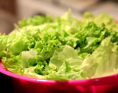 Salata Verde. Cum alegi cea mai bună și sănătoasă salată verde. Nu te lăsa înșelat!