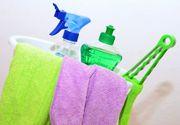 Ce soluții să folosești pentru o curățare eficientă a mașinii tale?