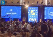 Panică totală la PNL. Decizia luată de partid, în urmă cu puțin timp