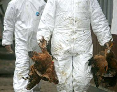 Maladiile nemiloase care au îngrozit lumea modernă înainte de pandemia de coronavirus!...
