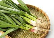 Legătura neștiută dintre usturoiul verde și cancer. Ce conține această legumă în interior. Efectul asupra organismului