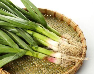 Legătura neștiută dintre usturoiul verde și cancer. Ce conține această legumă în...