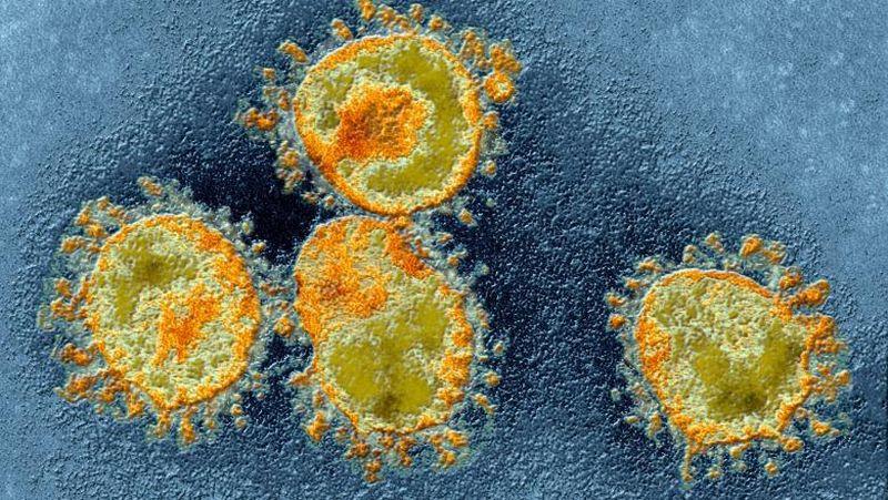 apa oxigenata coronavirus