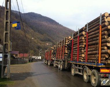Se vor interzice sau nu defrișările în România? Solicitarea făcută de Avocatul Poporului