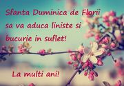 Imagini cu mesaje frumoase de Florii: La mulți ani!