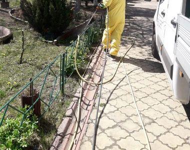 Primăria Capitalei a început tratamentele de combatere a ţânţarilor şi căpuşelor din...