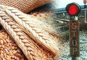 VIDEO| Interzis la export. O nouă măsură de urgență în România