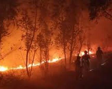 Incendiul care face ravagii de la 4 aprilie în zona de excludere se apropie periculos...