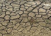 Ministrul Agriculturii spune că sunt afectate de secetă 2,9 milioane de hectare din toate judeţele din Moldova şi din sudul ţării