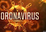 """Specialistul care a provocat renumărarea voturilor de la europarlamentare face praf ideea de pandemie de coronavirus! """"Pericolul Covid-19 este exagerat grotesc"""""""