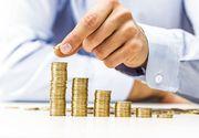 Guvernul pregăteşte o serie de măsuri pentru susţinerea activităţii marilor companii