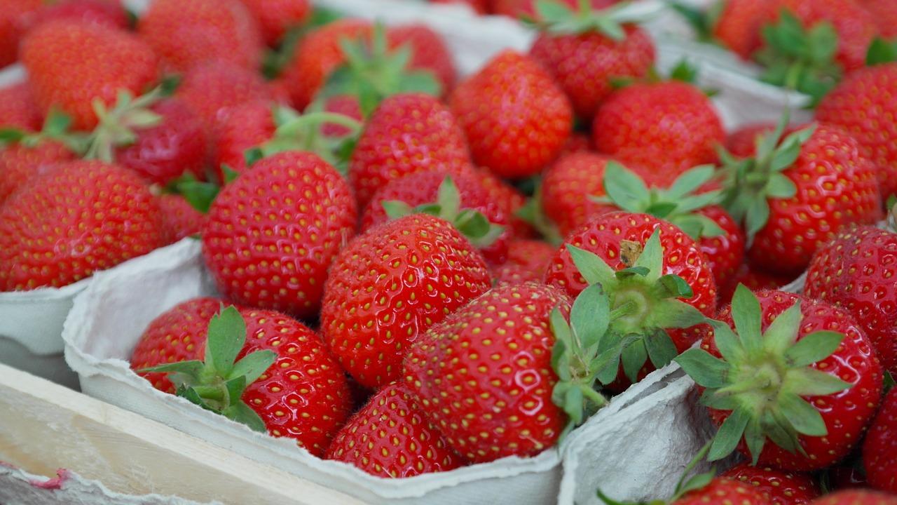 Căpșunile stimulează arderea grăsimilor, mai ales dacă sunt mâncate dimineața