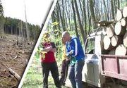 VIDEO | Revoltă după tăierile ilegale de păduri