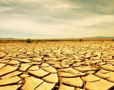 Climatolog: 2020 va fi printre primii trei cei mai călduroși ani de la începerea...