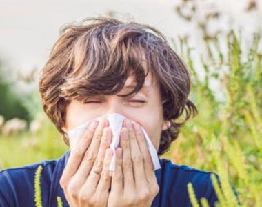 Societatea Mondială de Alergologie: Cei care suferă de alergii sau astm alergic sunt...