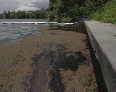 Lacul Băneasa a fost poluat cu o substanță de culoare neagră. Reacția Gabrielei Firea