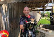 Un pui de pisică a căzut într-o fântână adâncă de 25 de metri, fiind salvat de pompierii din Braşov - VIDEO