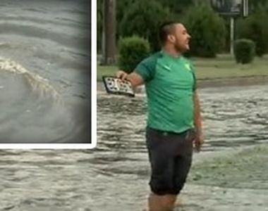 VIDEO| Furtuni violente în toată țara