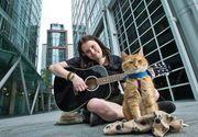 """Pisoiul care a inspirat cartea şi filmele """"A Street Cat Named Bob: And How He Saved My Life"""" a murit la vârsta de 14 ani"""