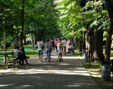 VIDEO   Relaxare în parc şi mall