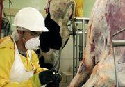 Situaţia este alarmantă: Câţi români s-au infectat cu COVID-19 la abatorul din Germania?