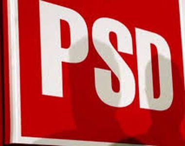"""Nou contracandidat pentru șefia PSD. """"Când spunea Dragnea """"culcat"""", erau sub mochetă"""""""