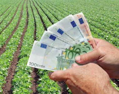 Fermierii români au la dispoziţie fonduri noi de 12,5 milioane de euro de la BERD şi BEI