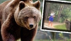 VIDEO| Șocant: Selfie cu ursul