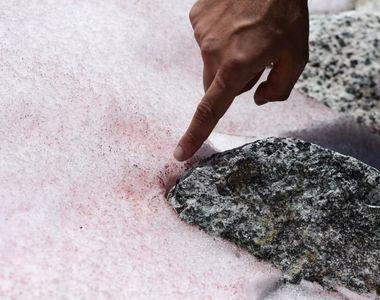 """Imaginile cu """"gheața roz"""" din Alpi i-au pus pe gânduri pe oamenii de știință..."""