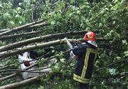 Furtuna a făcut pagube în Tulcea. Mai multe mașini avariate, după ce şapte copaci au fost doborâţi de vânt