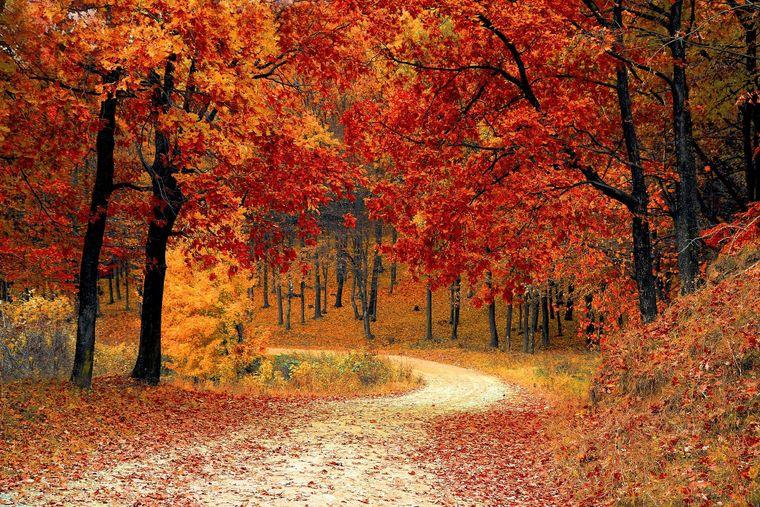 Vremea în luna octombrie! Anunțul meteorologilor