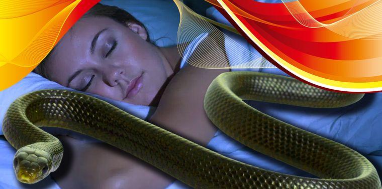 Ce înseamnă când visezi șerpi? Ai motive de îngrijorare?